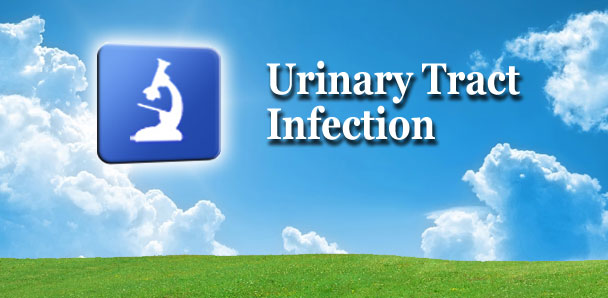 Can A Urinary Tract Infection Cause Diarrhea In Dogs