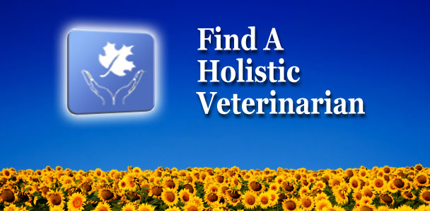 A S Randhawa » Find A Vet